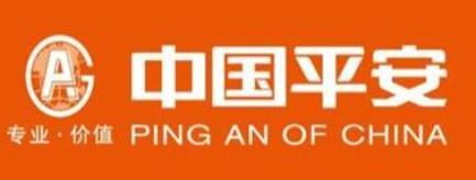 中国平安综合金融服务集团-长株潭人才网